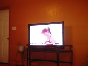 The new 44 inch HDTV just in time for the Games