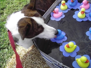 PJ at the duck pond