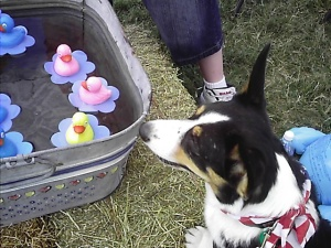 Lindy at the duck pond
