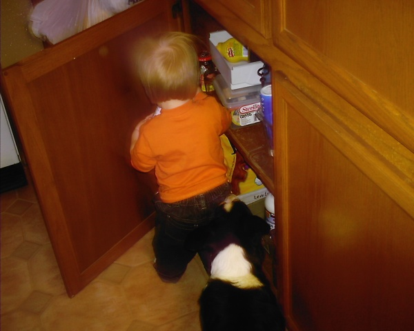 Lindy helps Joe explore the cabinets