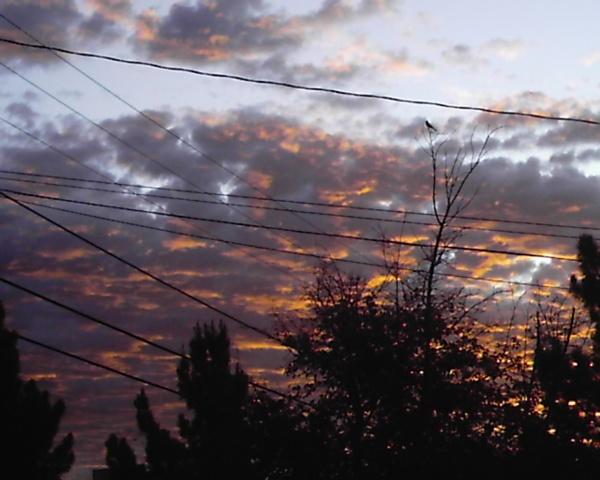 skywatch-morning-0041