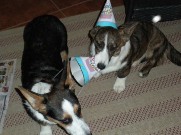 birthday party 014