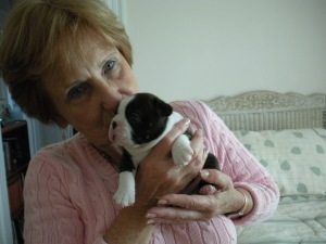 Linda and the cute Boston puppy